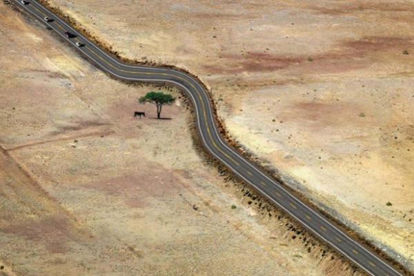 """ยอดมาก !! รวมภาพสิ่งปลูกสร้างอนุรักษ์ธรรมชาติ บอกเลยว่า """" เยี่ยมที่สุดในโลก """""""