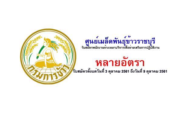 ศูนย์เมล็ดพันธุ์ข้าวราชบุรี รับสมัครพนักงานจ้างเหมาบริการเพื่อช่วยเสริมการปฏิบัติงาน หลายอัตรา