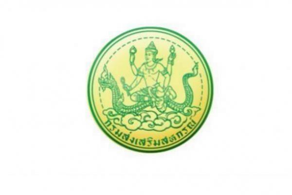 ป.ตรี ทุกสาขา กรมส่งเสริมสหกรณ์ รับสมัครบุคคลเพื่อเลือกสรรเป็นพนักงานราชการทั่วไป 7-11 มกราคม 2562