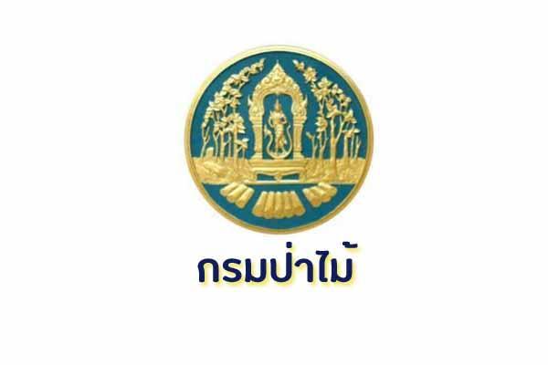 กรมป่าไม้ รับสมัครบุคคลเพื่อเลือกสรรเป็นพนักงานราชการทั่วไป ตั้งแต่วันที่ 11 - 15 กุมภาพันธ์ 2562