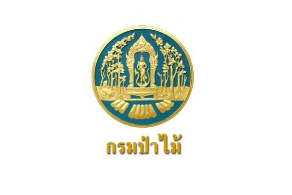 กรมป่าไม้ รับสมัครบุคคลเพื่อเลือกสรรเป็นพนักงานราชการทั่วไป ประจำปี 2562