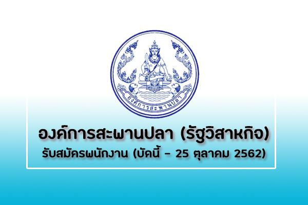 องค์การสะพานปลา (รัฐวิสาหกิจ) รับสมัครพนักงาน รับสมัครตั้งแต่บัดนี้ - 25 ตุลาคม 2562