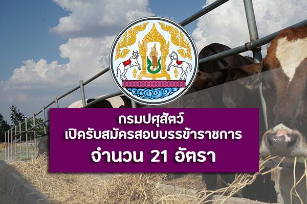 กรมปศุสัตว์ เปิดรับสมัครสอบบรรจุเข้ารับราชการ จำนวน 21 อัตรา ตั้งแต่วันที่ 25 พฤศจิกายน - 17 ธันวาคม 2562