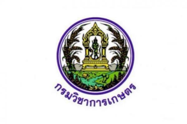 สถาบันวิจัยพืชสวน รับสมัครบุคคลเพื่อเป็นพนักงานราชการทั่วไป 3 อัตรา ตั้งแต่วันที่ 28 พฤศจิกายน - 4 ธันวาคม 62