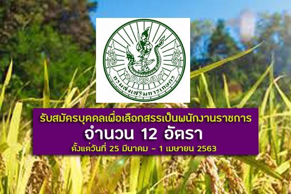 กรมส่งเสริมการเกษตร รับสมัครบุคคลเพื่อเลือกสรรเป็นพนักงานราชการทั่วไป 12 อัตรา ตั้งแต่วันที่ 25มี.ค.-1เม.ย.63