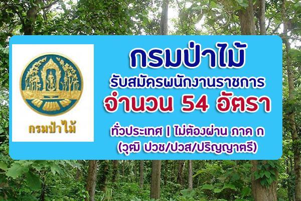 (ไม่ต้องผ่าน ภาค ก) กรมป่าไม้ รับสมัครบุคคลเพื่อเลือกสรรเป็นพนักงานราชการ 54 อัตรา ประจำปี 2563