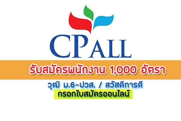 Job Cp All - บริษัท ซีพี ออลล์ จํากัด (มหาชน) รับสมัครพนักงาน 1,000 อัตรา