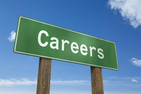 """กรมจัดหางานเผย """"5 อาชีพ"""" มาแรงแซงโค้งถึงปี'62"""