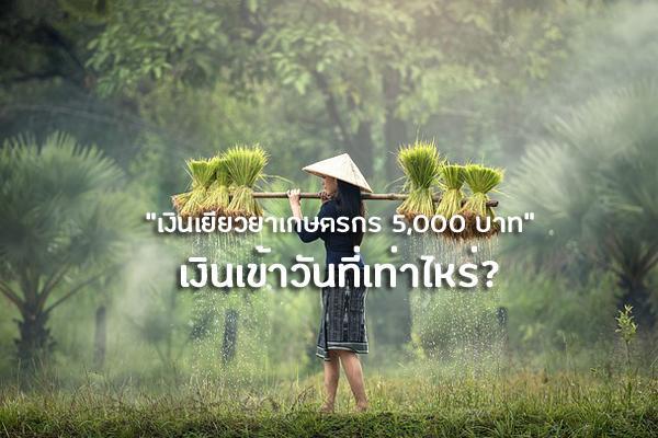 เงินเยียวยาเกษตรกร 5,000 บาท เงินเข้าวันที่เท่าไหร่? | เช็คเงินเยียวยาเกษตรกร